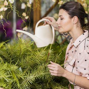 Come annaffiare le piante?